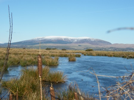 GALLOWAY HILLS AND THE HEAD OF WIGTOWN BAY