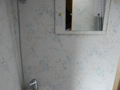 THE SHOWER INSIDE TOILET COMPARTMENT